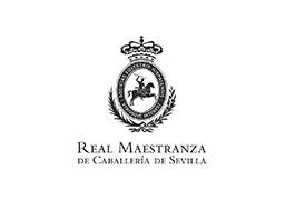 http://asaong.org/wp-content/uploads/2016/02/maestranza_web.jpg