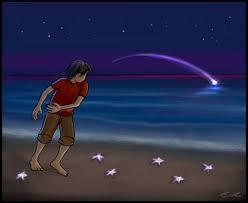 estrellas-de-mar1